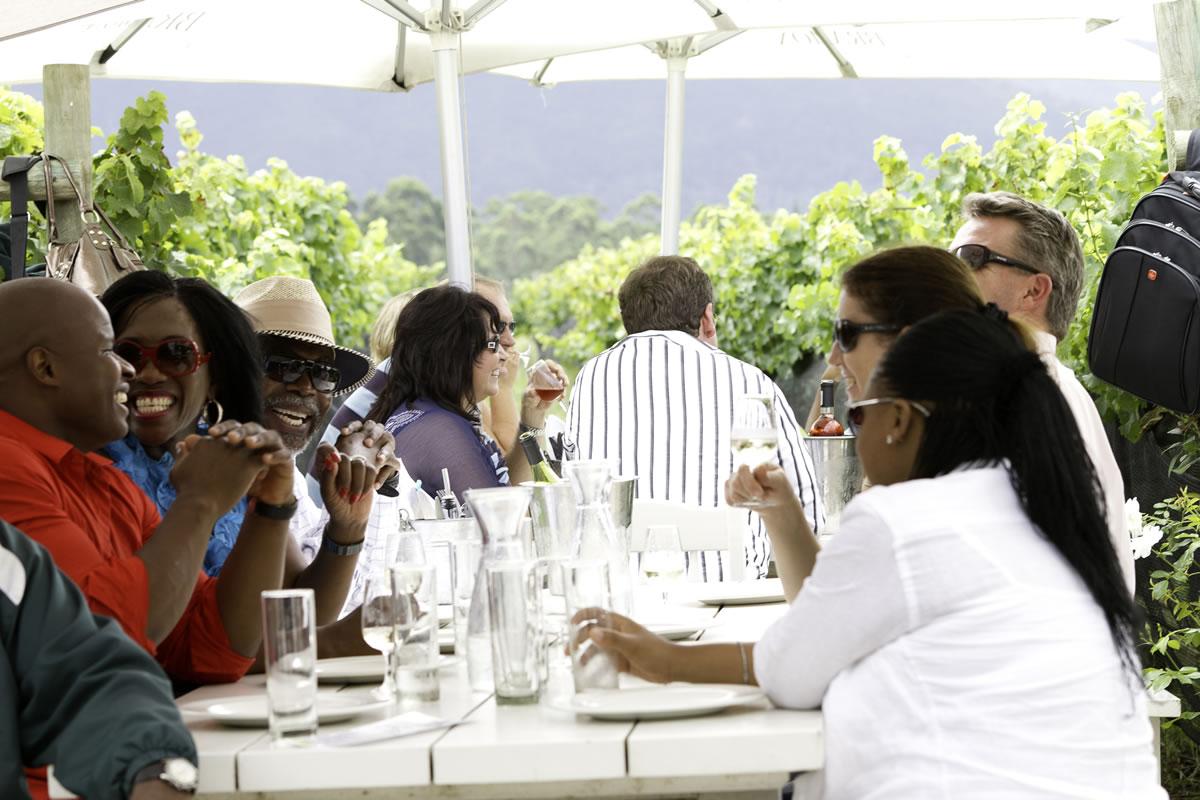 bramon-gallery-guests vines 11